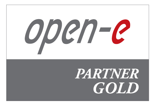 open-e_partner_logo_-_gold.jpg