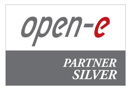 open-e Partner Silver